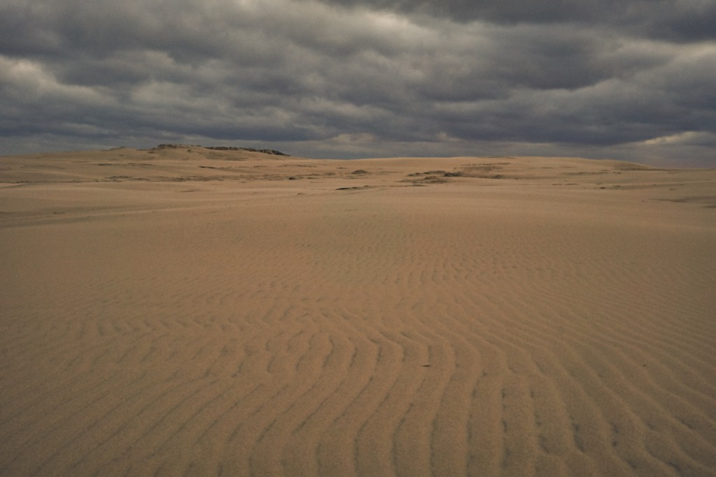 Det er ikke kun der hvor havet møder stranden af kampen udfolder sig. Vinden fra vest blæser store mængder af sand ind i landet og få kilometer inden har den skabt en 1 km2 stor ørken. Den store sand banke bevæger sig langsom far vest mod øst med en hastighed på 15 meter om året.